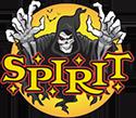 Spirit Halloween Online